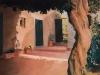 [Review] 그 순간으로 유일한 빛 - 앨리스 달튼 브라운展