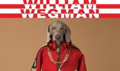 [리뷰] 개의, 개에 의한, 개를 위한 (Being Dog) : 윌리엄 웨그만 展, Being Human
