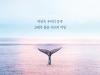 [도서] 고래가 가는 곳