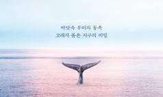[Vol.816] 고래가 가는 곳