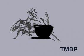 [에세이] TMBP 11. 내게 글쓰기는 물컵이다