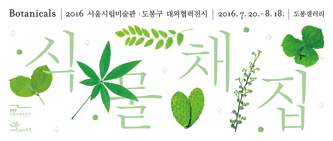 식물2.jpg