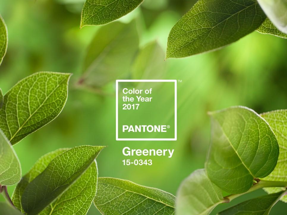 PANTONE-Color-of-the-Year-2017-Greenery-15-0343-leaves-2732x2048.jpg