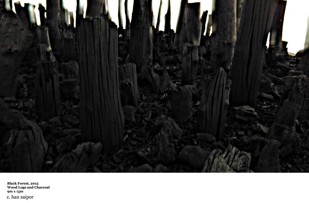 Black Forest Series.jpg