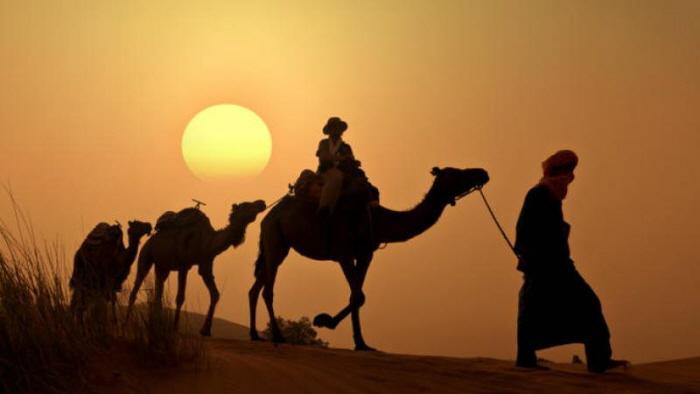 꾸미기_sunset-camel-ride-in-the-palm-grove-of-marrakech-in-marrakech-178040_crop_flip_800_450_f2f2f2_center-center.jpg