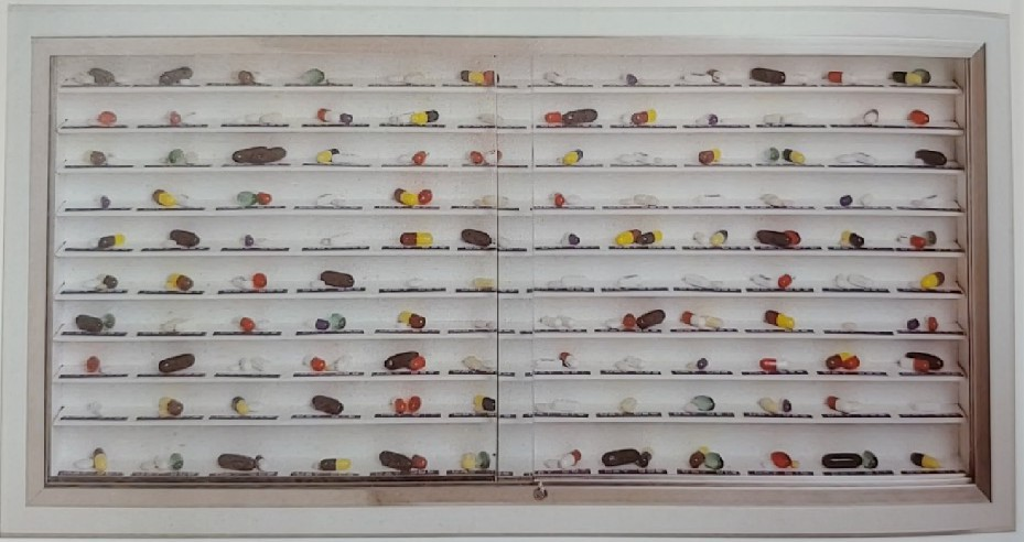 Day by Day, Damien Hirst, stainless steel, glass and wood cabinet with plastic Dymo tape and pills, 2003.jpg