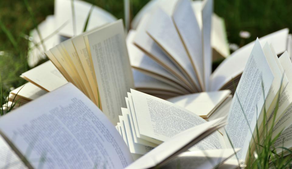 books-2241635_960_720.jpg