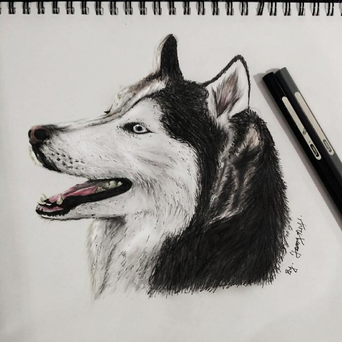 [크기변환1]dog_민정은(1).jpg
