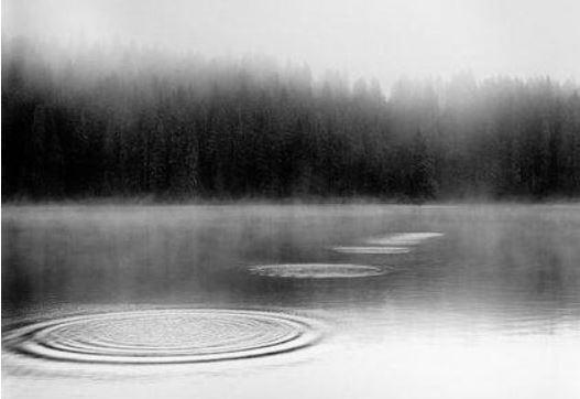 호수에 돌멩이.JPG