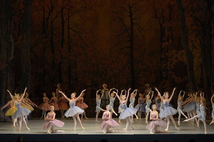 Don Quixote by Valentin Baranovsky ⓒ State Academic Mariinsky Theatre (1).JPG