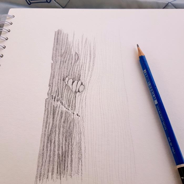 [크기변환][포맷변환]나뭇결.jpg