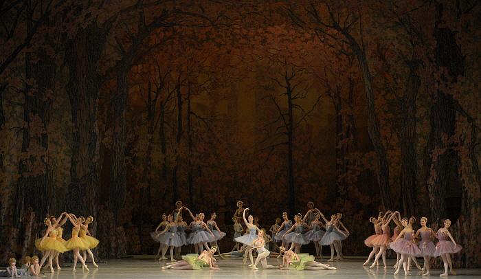 _Don Quixote by Valentin Baranovsky ⓒ State Academic Mariinsky Theatre (3).JPG