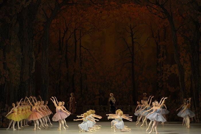 Don Quixote by Valentin Baranovsky ⓒ State Academic Mariinsky Theatre.JPG