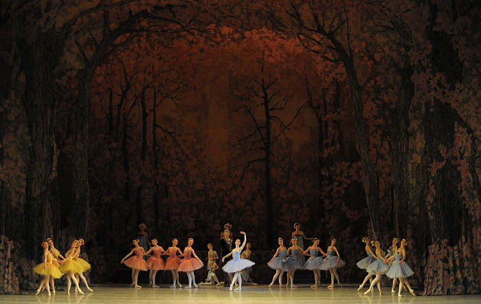 Don Quixote by Valentin Baranovsky ⓒ State Academic Mariinsky Theatre (4).JPG