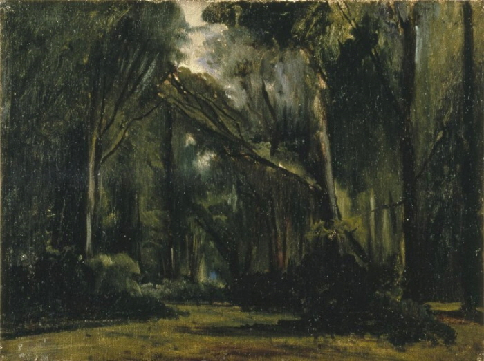 Brooklyn_Museum_-_Landscape_in_the_Forest_at_Compiègne_-_Paul_Huet.jpg