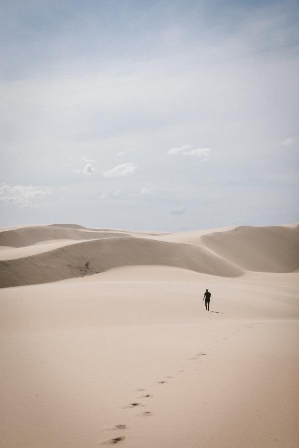 [크기변환]사막 외로운.jpg