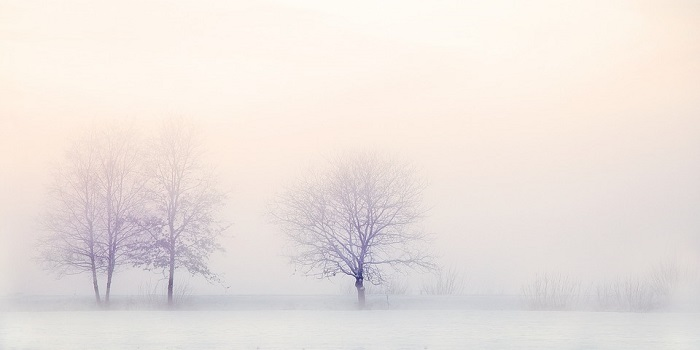 winter-landscape-2571788_960_720.jpg