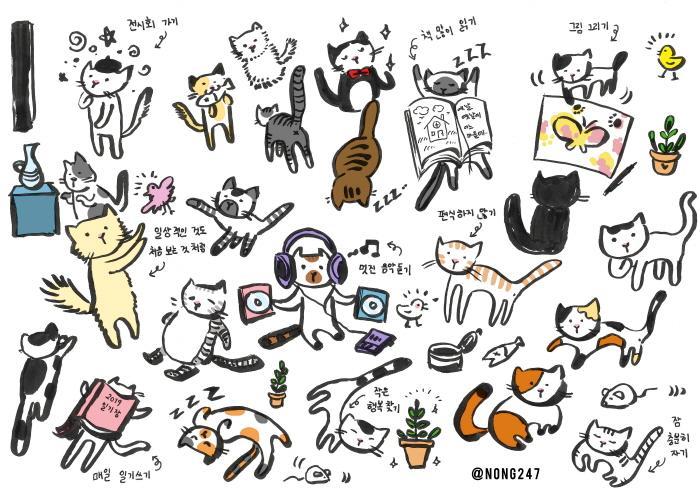 크기변환_cat.jpg