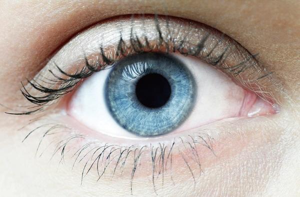 [꾸미기]97_감각-놀라운_메커니즘_032-033-1_사람눈.jpg