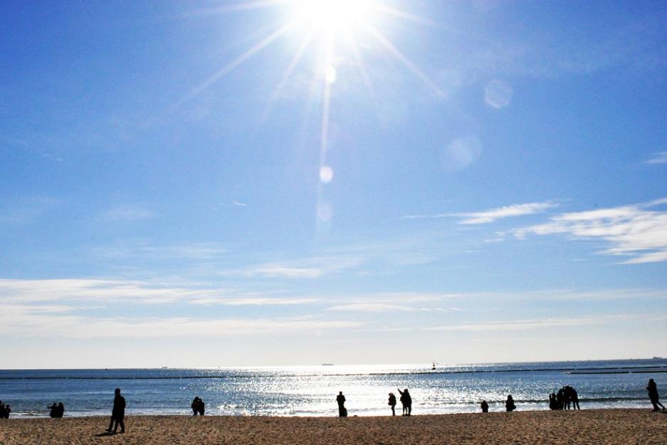 beach-3936382_960_720.jpg