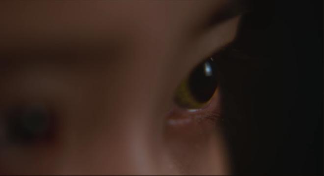 고양이눈.jpg