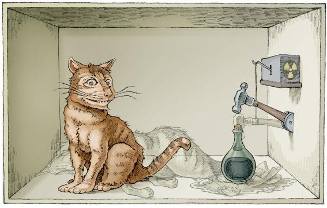 슈뢰딩거의 고양이 사진.jpg
