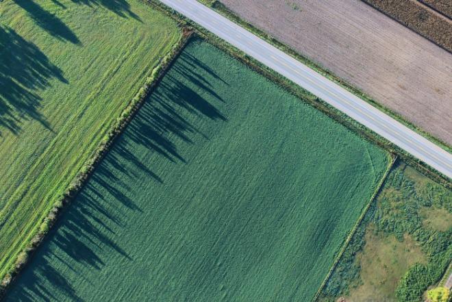 [포맷변환]agriculture-1867212_1920.jpg