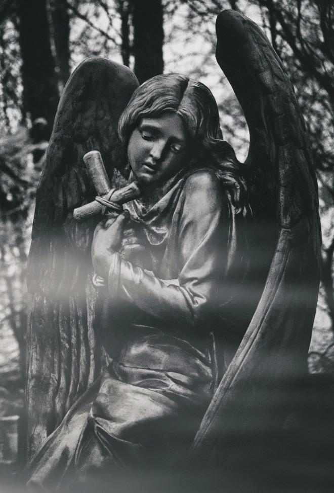 [크기변환]julia-kadel-EuYT0oyoe4I-unsplash.jpg