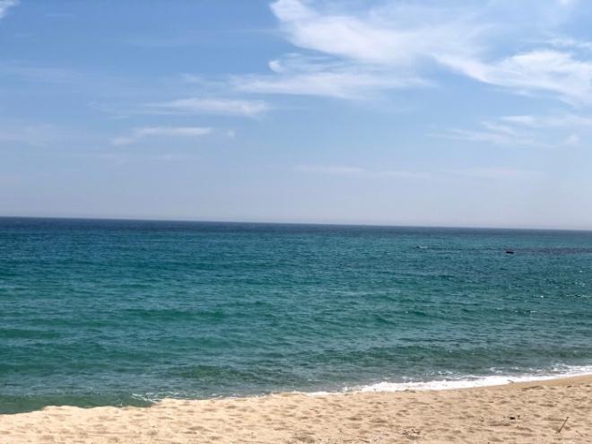 1여름바다.jpg