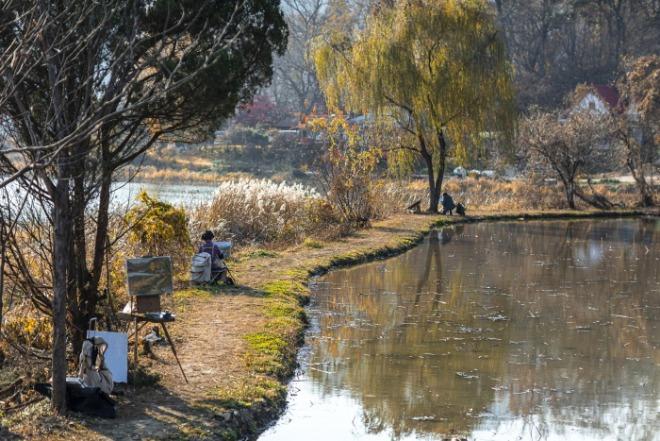 [크기변환]pond-5767213_1920.jpg