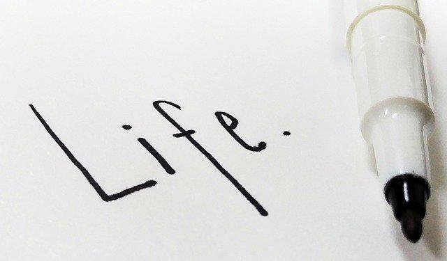 life-2382349_640.jpg