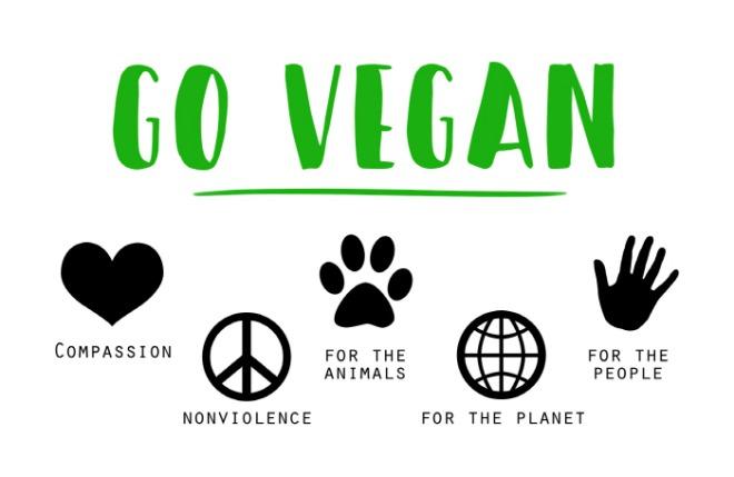 [크기변환][포맷변환]vegan-1343429_1920.jpg