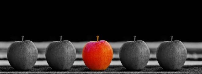 [크기변환]apple-1594742_1920.jpg