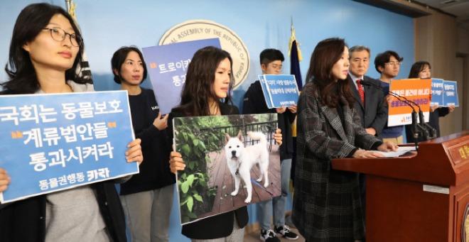 동물보호법 아시아투데이.jpg