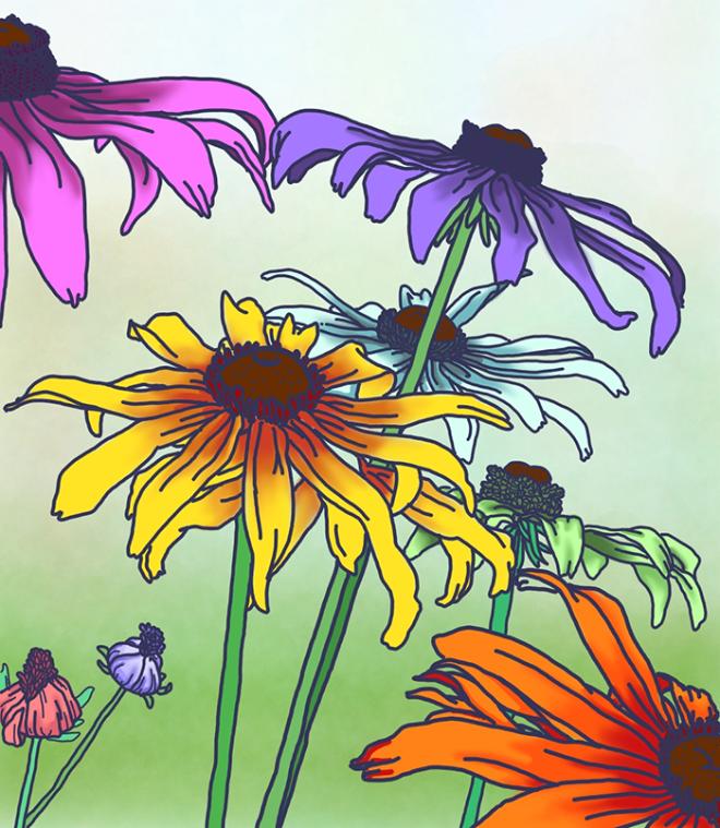 꽃들의이야기.png