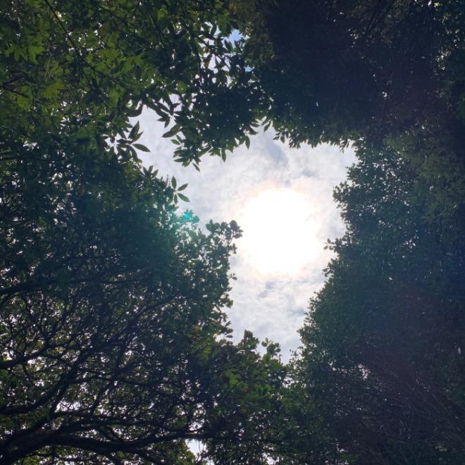 [크기변환]여름 하늘.jpg