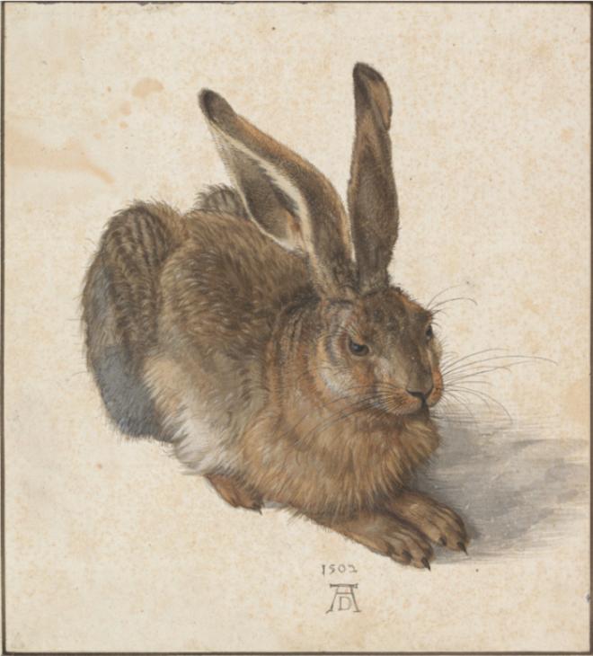 토끼.PNG