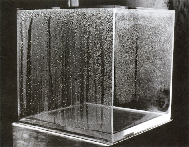 Hans Haacke, Condensation cube.png